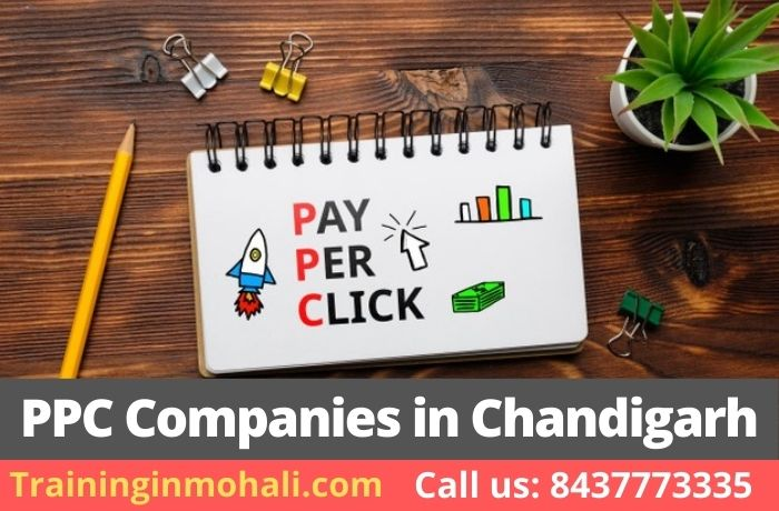 Top 5 PPC Companies in Chandigarh